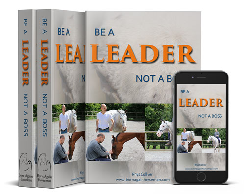 Be a Leader not a Boss - ebook