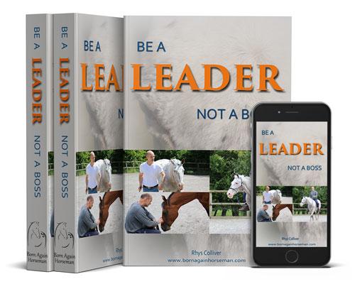Be a Leader not a Boss - ebook